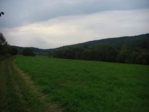 dolina smereczne
