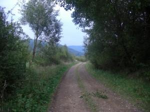 droga do smerecznego