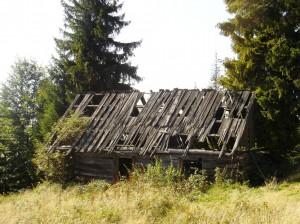 pol. na Obidowcu 2011r., sza-as J. Parzygnata, kadr. DSC09853