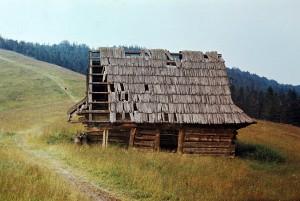 popr. fot. pol. Podska-y, 1979