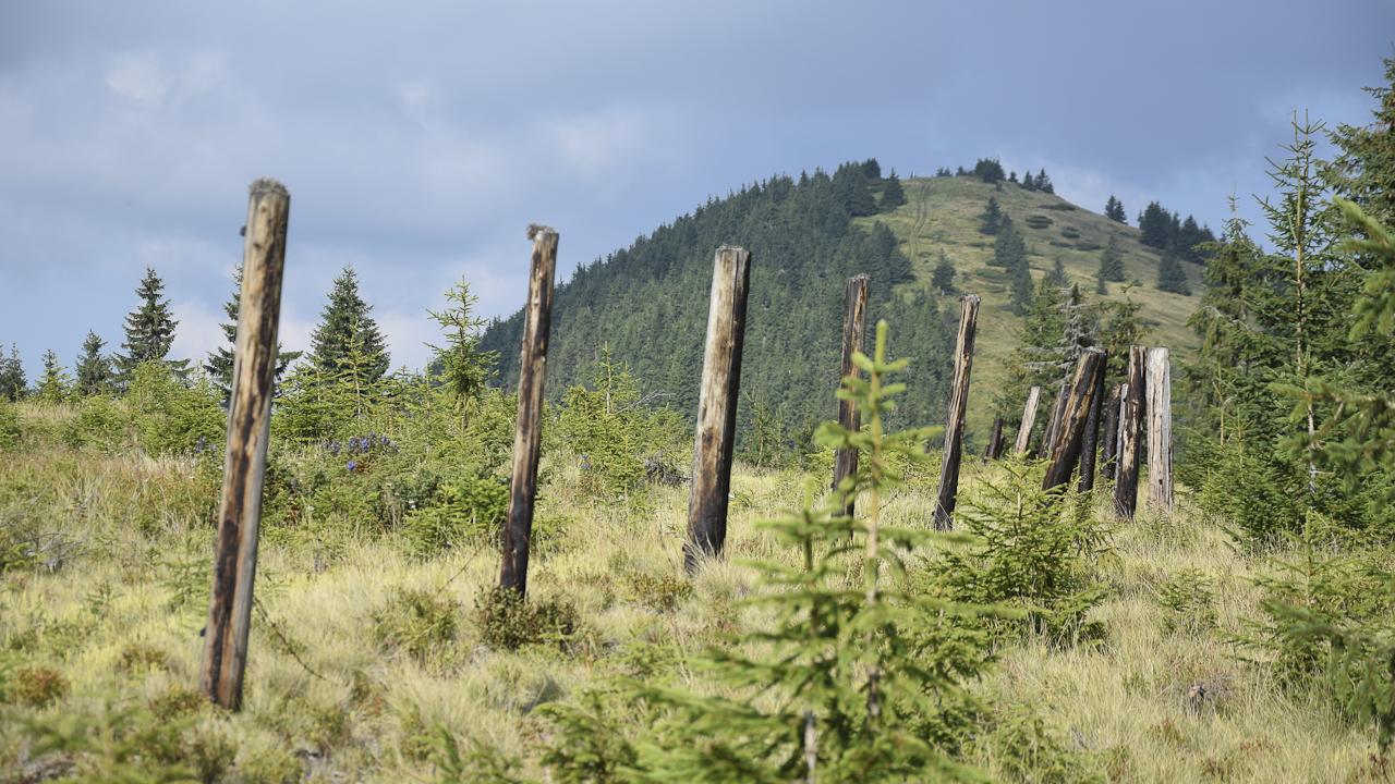Góry Czywczyńskie - Stoh, triplex oraz sistiema